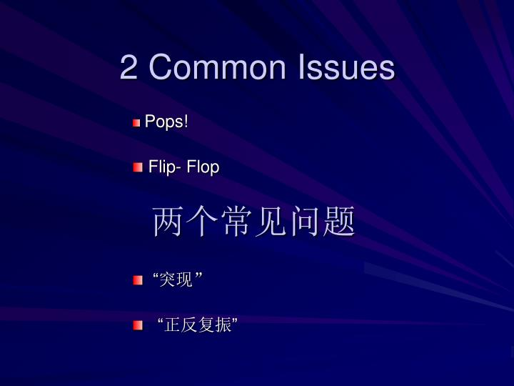 2 Common Issues