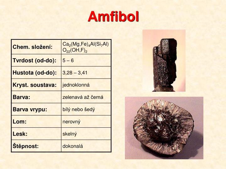 Amfibol