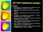 qt pcr validation design1