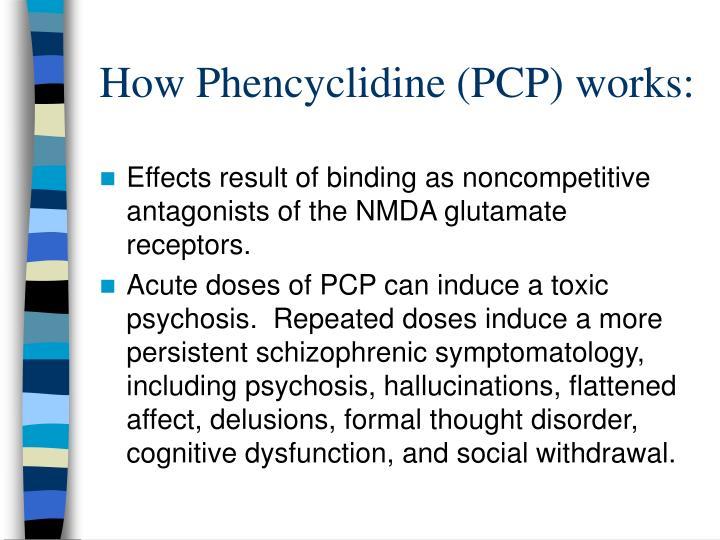 How Phencyclidine (PCP) works: