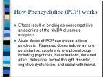 how phencyclidine pcp works