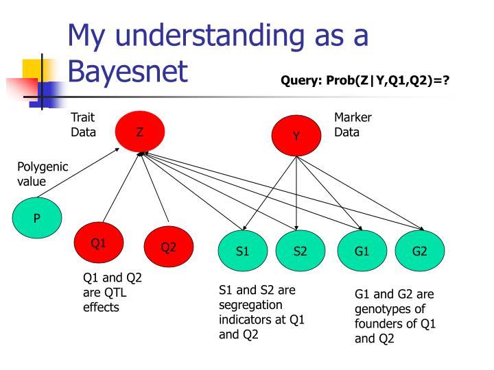 My understanding as a Bayesnet
