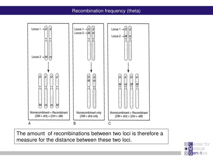 Recombination frequency (theta)