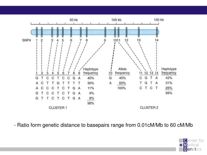 - Ratio form genetic distance to basepairs range from 0.01cM/Mb to 60 cM/Mb