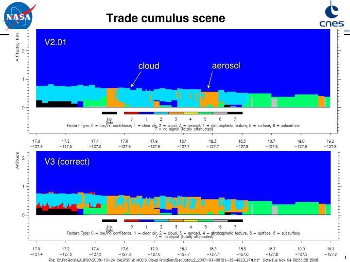 Trade cumulus scene