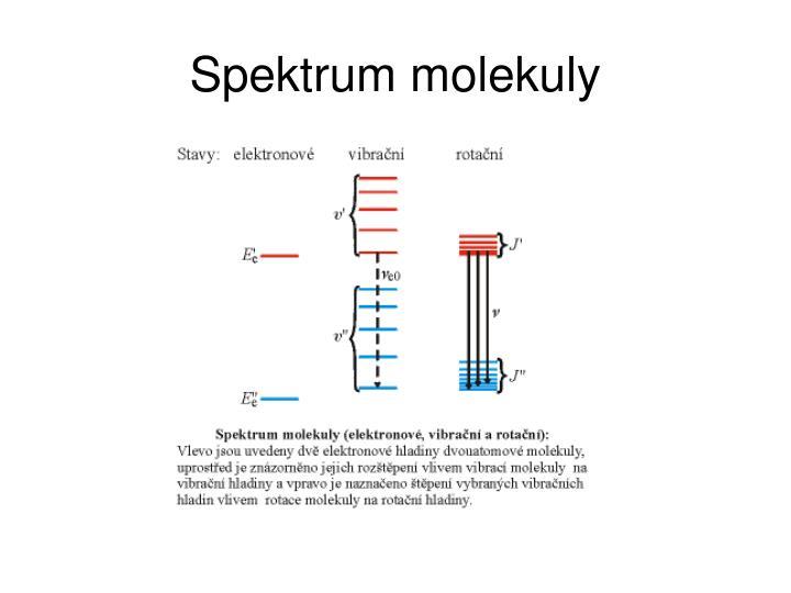 Spektrum molekuly