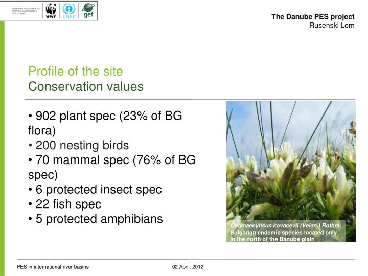 The Danube PES project