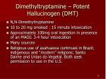 dimethyltryptamine potent hallucinogen dmt