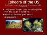ephedra of the us e trifurca e viridis e torreyana e nevadensis and e californica