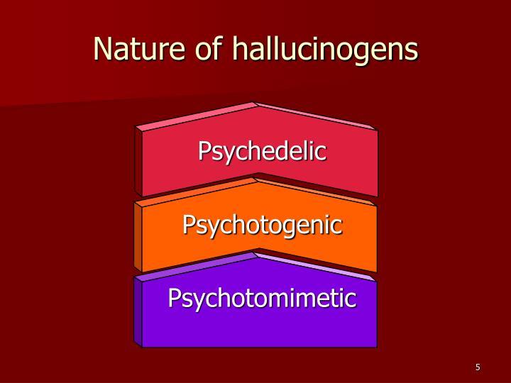 Nature of hallucinogens