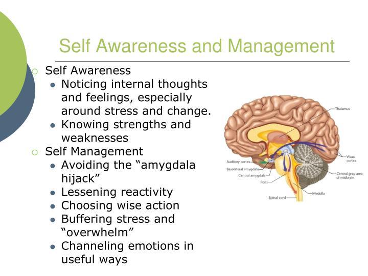 Self Awareness and Management