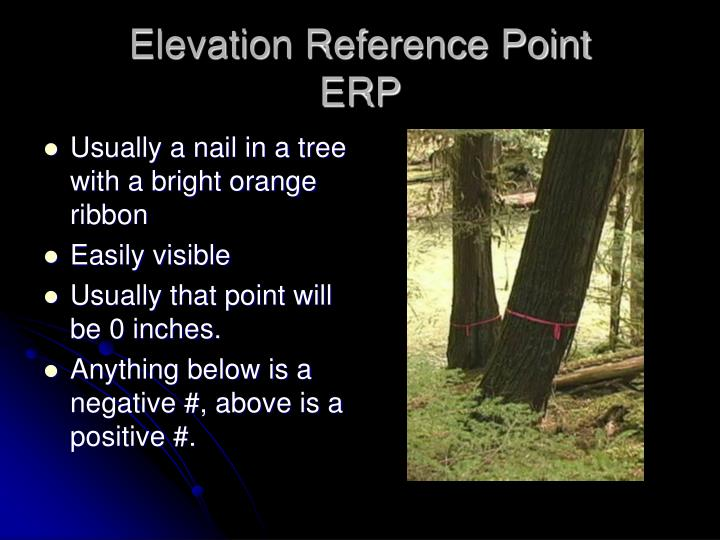 Elevation Reference Point
