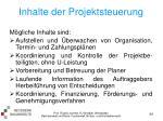 inhalte der projektsteuerung