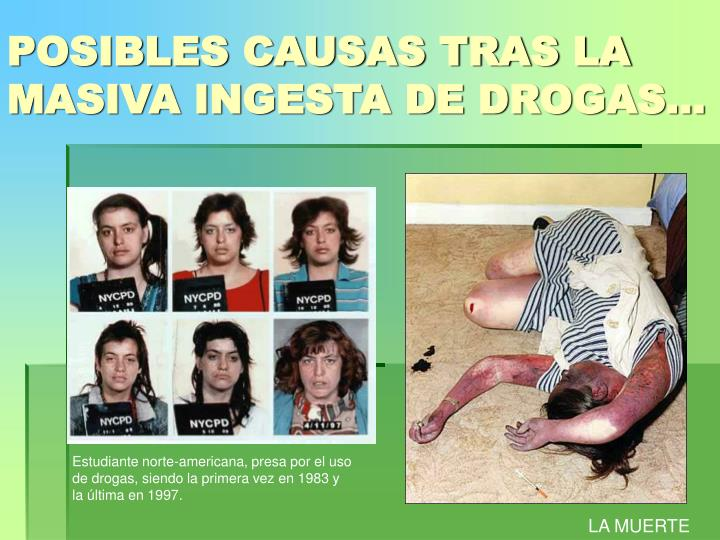 POSIBLES CAUSAS TRAS LA MASIVA INGESTA DE DROGAS…