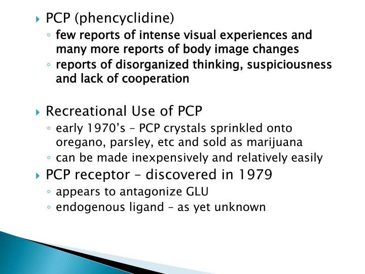 PCP (phencyclidine)