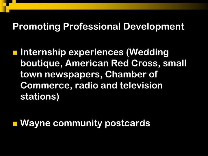 Promoting Professional Development
