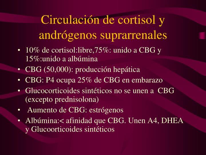 Circulación de cortisol y andrógenos suprarrenales