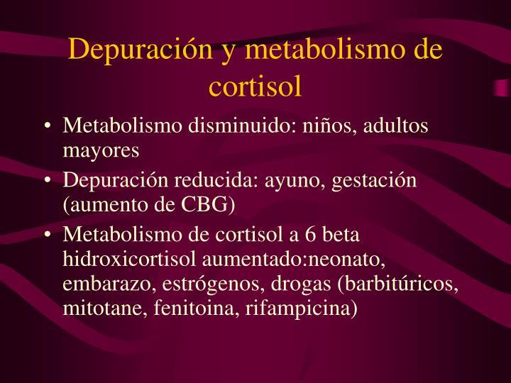 Depuración y metabolismo de cortisol