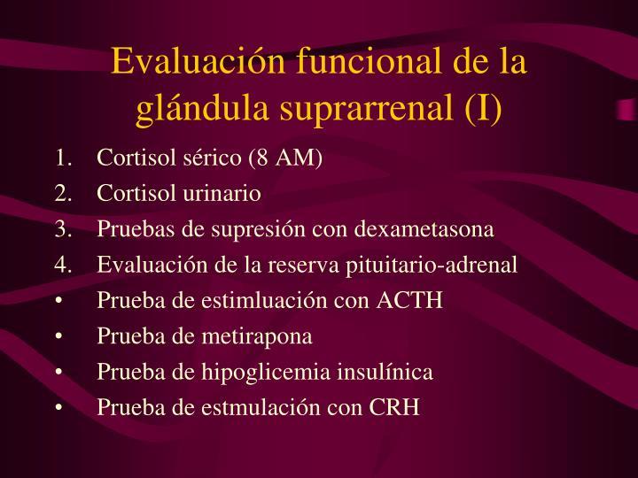Evaluación funcional de la glándula suprarrenal (I)