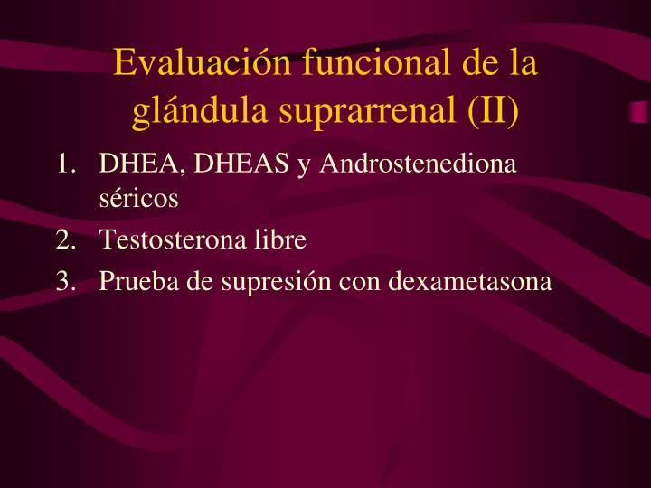 Evaluación funcional de la glándula suprarrenal (II)