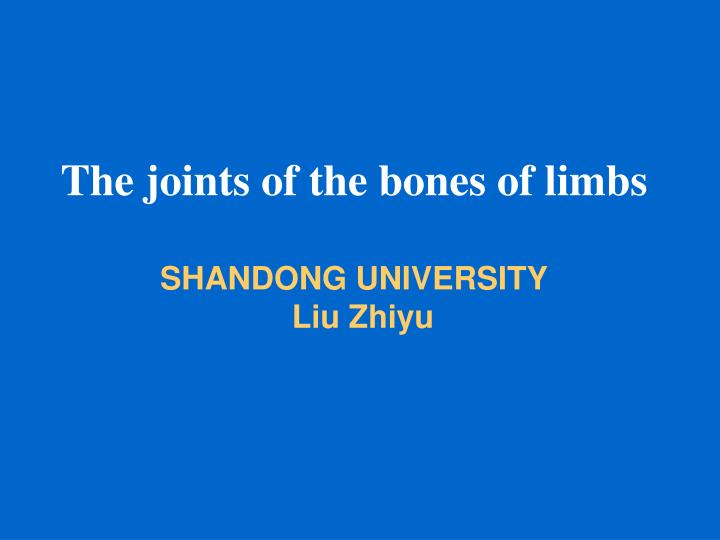 The joints of the bones of limbs