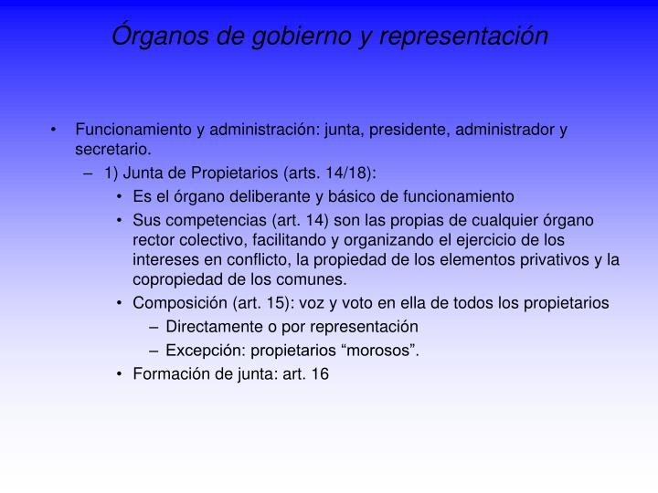 Órganos de gobierno y representación