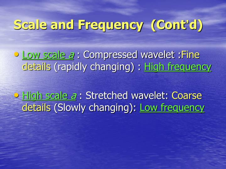 Scale and Frequency  (Cont