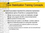 core stabilization training concepts1