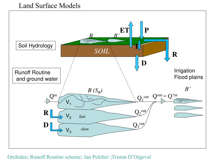 Land Surface Models