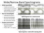 wide narrow band spectrograms