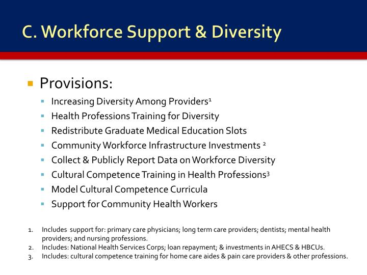 C. Workforce Support & Diversity