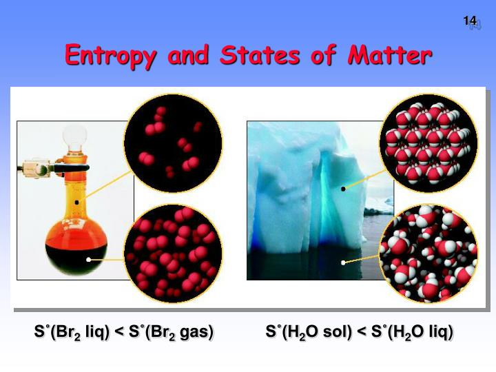 Entropy and States of Matter