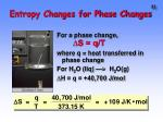 entropy changes for phase changes