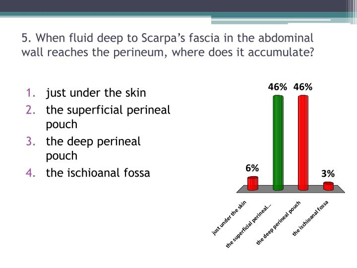 5. When fluid deep to Scarpa's fascia in the abdominal wall reaches the perineum, where does it accumulate?