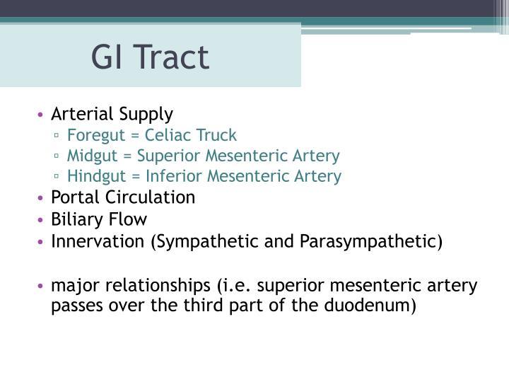 GI Tract