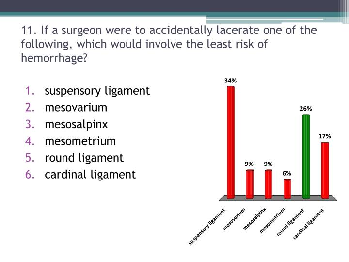 11. If a surgeon were to accidentally lacerate one of the following, which would involve the least risk of hemorrhage?
