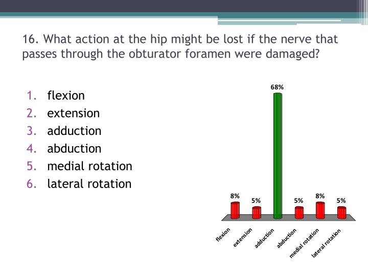 16. What action at the hip might be lost if the nerve that passes through the obturator foramen were damaged?
