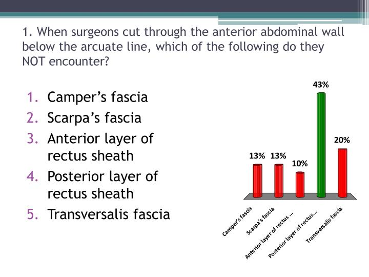 1. When surgeons cut through the anterior abdominal wall below the arcuate line, which of the following do they NOT encounter?