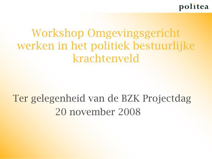 Workshop Omgevingsgericht werken in het politiek bestuurlijke krachtenveld