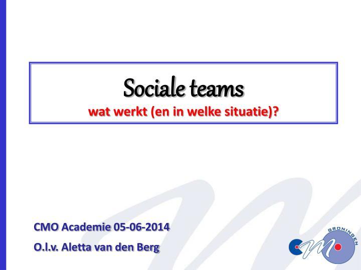 sociale teams wat werkt en in welke situatie