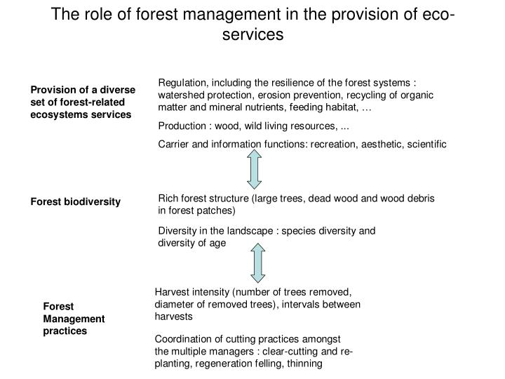 The role of forest management in the provision of eco-services