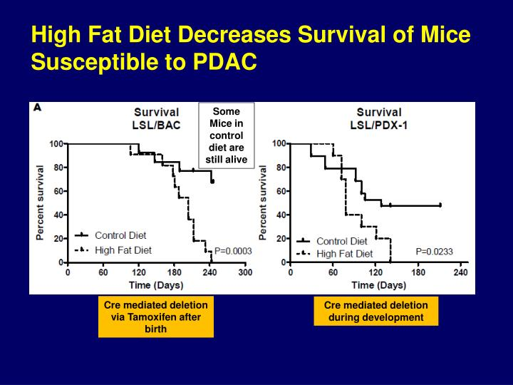 High Fat Diet Decreases Survival of Mice Susceptible to PDAC