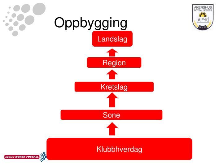 Oppbygging