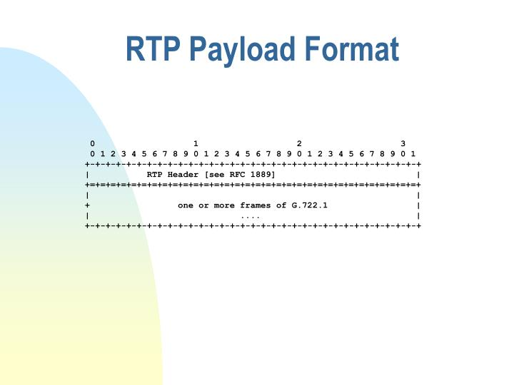 RTP Payload Format