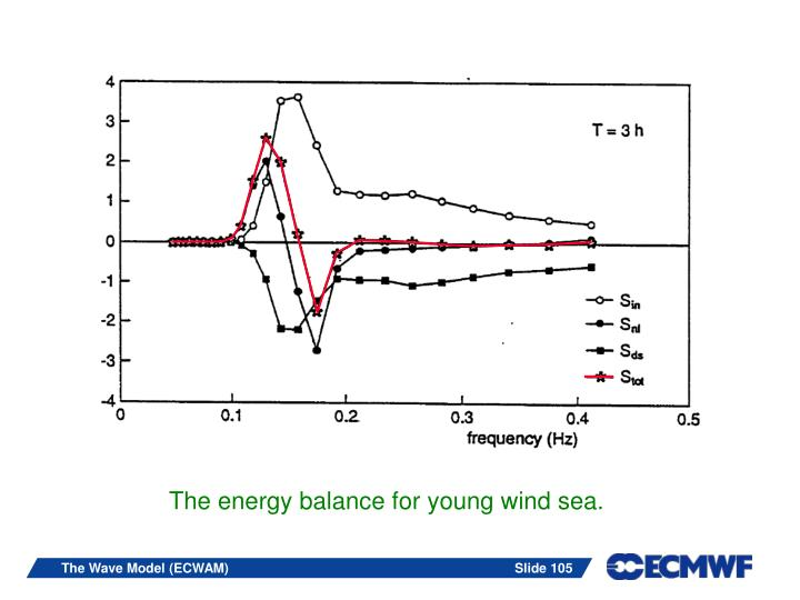 The energy balance for young wind sea.