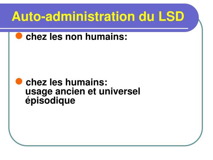 Auto-administration du LSD