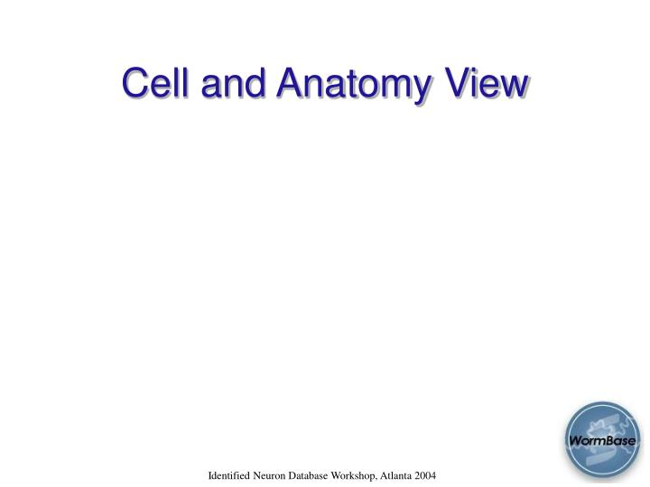 Cell and Anatomy View