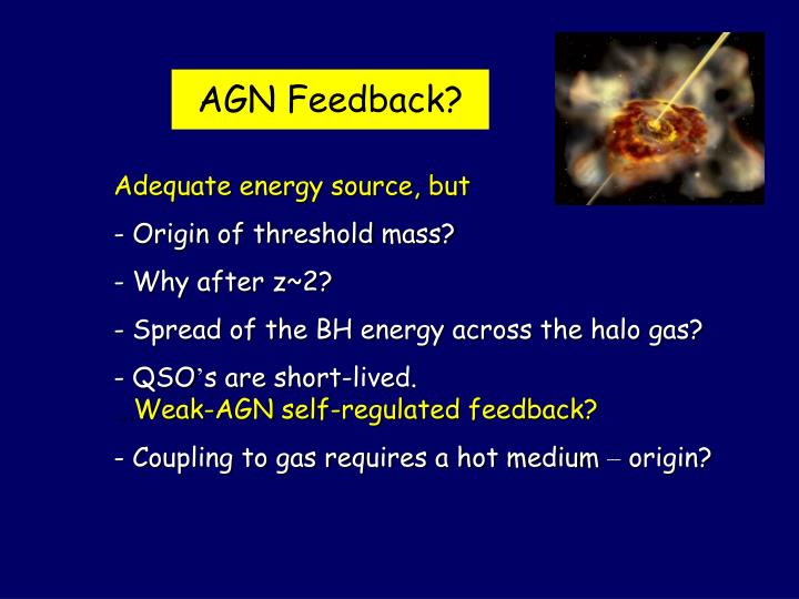 AGN Feedback?