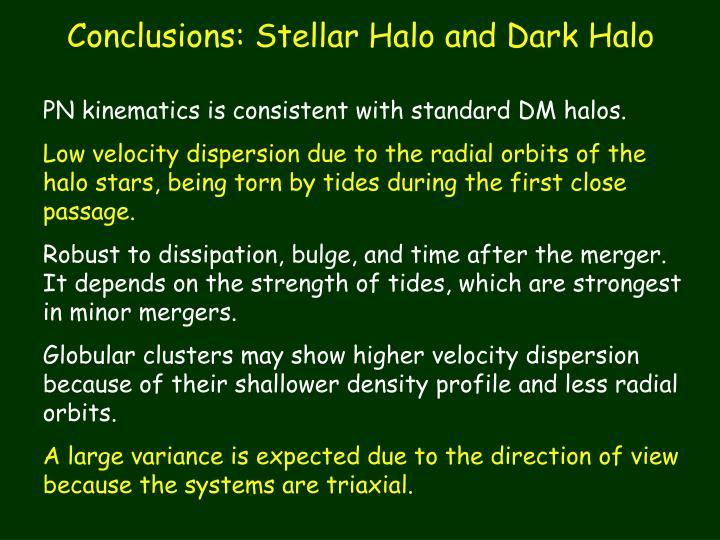 Conclusions: Stellar Halo and Dark Halo