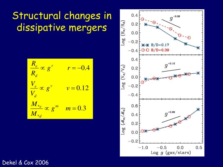 Structural changes in dissipative mergers